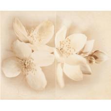 Плитка Стіна Декор Cersanit Diana decor flower (50x40)