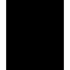 Патрубок в сифон для подключения стиральной машины М110 1 1/2*1 1/2 Б